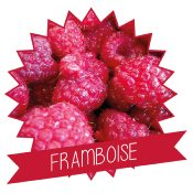 Mix à glace italienne Framboise